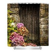 Antique Wooden Door And Hortensia Shower Curtain