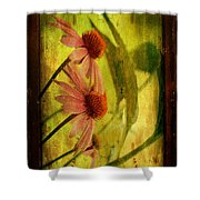 Antiqued Cone Flowers Shower Curtain