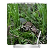 Anura Shower Curtain