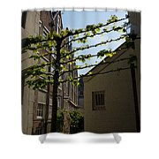 Any Space Can Be A Garden - Creative Urban Gardening From Amsterdam Shower Curtain