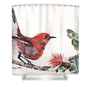 Apapane - Native Hawaiian Bird Shower Curtain
