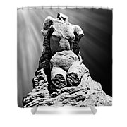 Aphrodite Of Milos Styled Sand Castle Shower Curtain