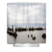 Apostles Of The Salton Sea Shower Curtain