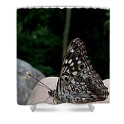 Appalachian Empress Shower Curtain