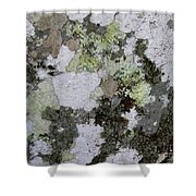 Appalachian Stone Flora Shower Curtain