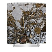 Apparitions On Ice Shower Curtain