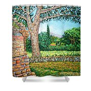 Appia Antica, View, 2008 Shower Curtain