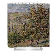 Apple Blossom Shower Curtain