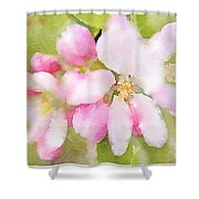 Apple Blossom Watercolour Shower Curtain
