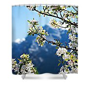 Apple Blossoms Frame The Rockies Shower Curtain