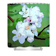 Apple Blossoms In The Spring - Painting Like Shower Curtain