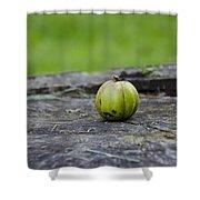 Apple Gourd Shower Curtain