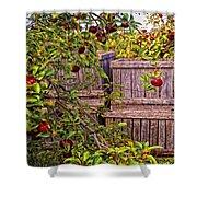 Apple Orchard Harvest Shower Curtain