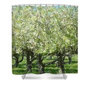 Apple Orchard Shower Curtain