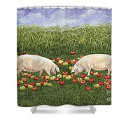 Apple Sows Shower Curtain