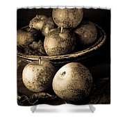 Apple Still Life Black And White Shower Curtain