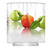 Apple Story Shower Curtain