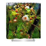 Apple Tree In April Shower Curtain