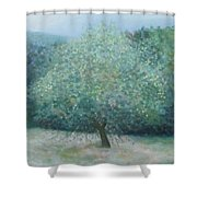 Apple Tree Shower Curtain