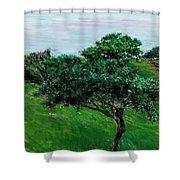 Apple Trees By The Sea Trouville Shower Curtain
