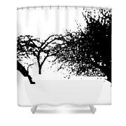 Apple Trees Shower Curtain