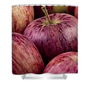 Apples 01 Shower Curtain