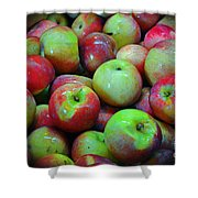 Apples Apples And More Apples Shower Curtain