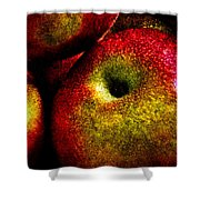 Apples Two Shower Curtain