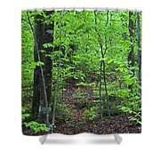 Approaching Sullivan Shower Curtain