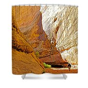 Approaching The Shadow In Grand Wash In Capitol Reef National Park-utah Shower Curtain