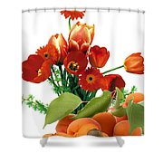 Apricots And Red Roses Shower Curtain