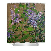 April Lilacs Shower Curtain