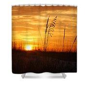April Morning Grasses Shower Curtain