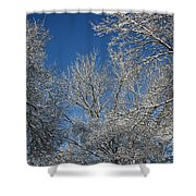 April Skies Shower Curtain