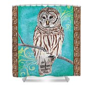 Aqua Barred Owl Shower Curtain