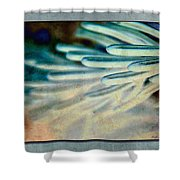 Aqua Needles Shower Curtain