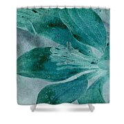 Aqualily Shower Curtain