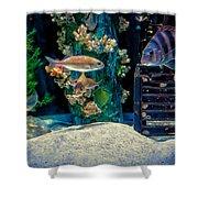 Aquarium Art Shower Curtain