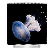 Aquarium Berlin Shower Curtain