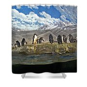 Aquarium Penguins Line Dance Shower Curtain