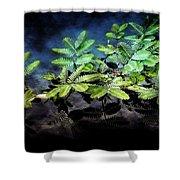 Aquatic Leaves Shower Curtain
