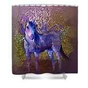 Arabian Horse 2  Shower Curtain