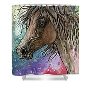 Arabian Horse And Burst Of Colors Shower Curtain