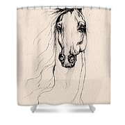 Arabian Horse Drawing 25 Shower Curtain