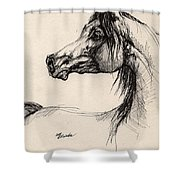 Arabian Horse Drawing 26 Shower Curtain