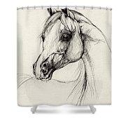 Arabian Horse Drawing 27 Shower Curtain