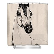 Arabian Horse Drawing 29 Shower Curtain