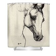 Arabian Horse Drawing 32 Shower Curtain