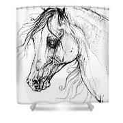 Arabian Horse Drawing 49 Shower Curtain