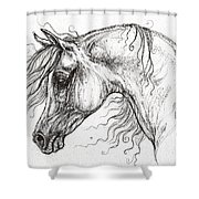 Arabian Horse Drawing 53 Shower Curtain